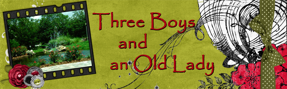 3boys-lady-header